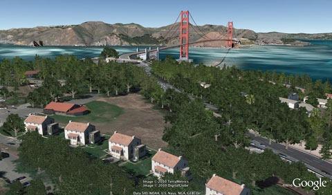 alberi-a-San-Francisco1